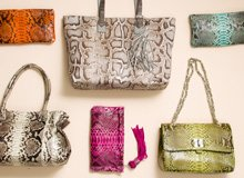 Animal Instinct: Exotic Handbags