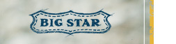 Shop Big Star Denim