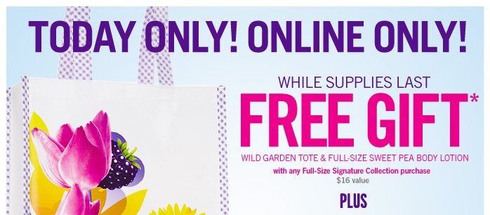 FREE GIFT with any full–size Signature Collection purchase