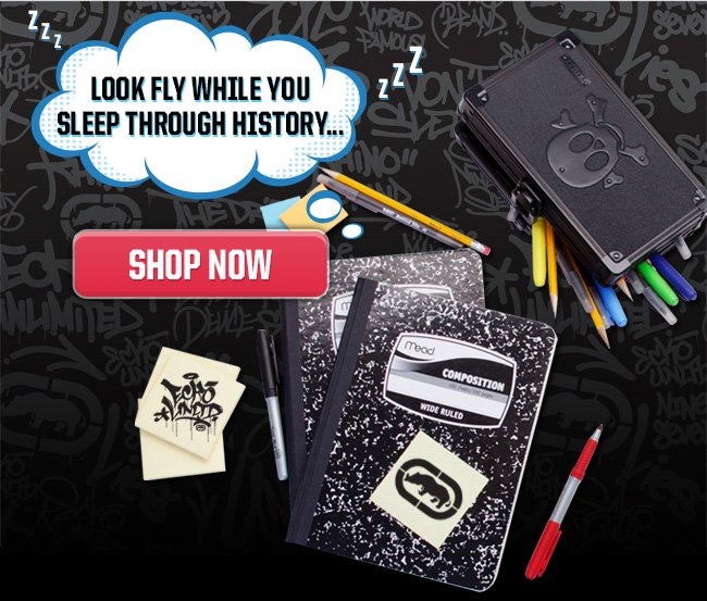 Look Fly While Sleep Through History