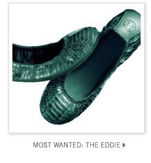 MOST WANTED: THE EDDIE