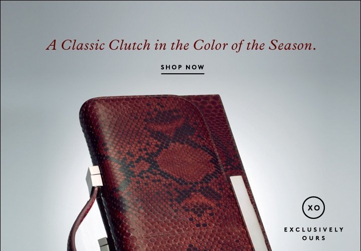 A CLASSIC CLUTCH IN THE COLOR OF 