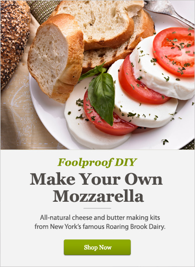 Make Your Own Mozzarella - Shop Now