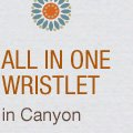 All In One Wristlet in Canyon