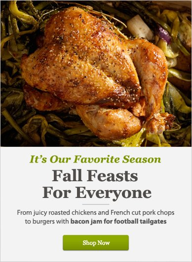 Fall Feasts For Everyone - Shop Now