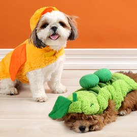 Trick or Treat: Pet Costumes & Toys