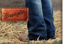 All Wrangler on Sale