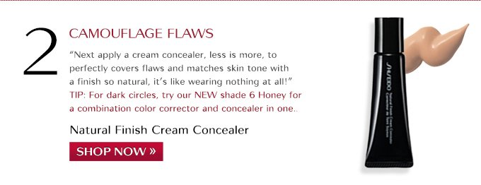 Natural Finish Cream Concealer