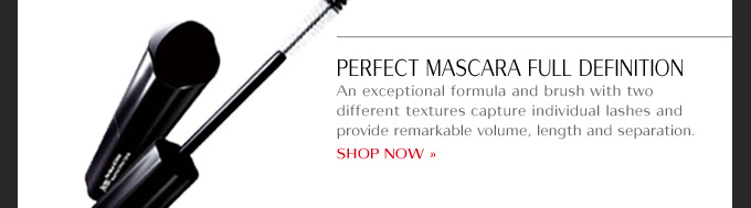 Perfect Mascara Full Definition