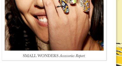 SMALL WONDERS Accessories Report