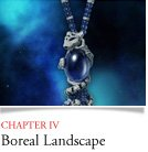 CHAPTER IV Boreal Landscape