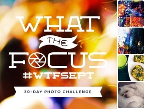 what the focus week two