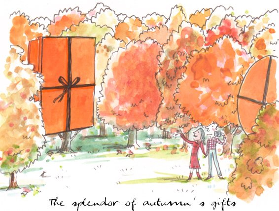 The splendor of autumns gifts