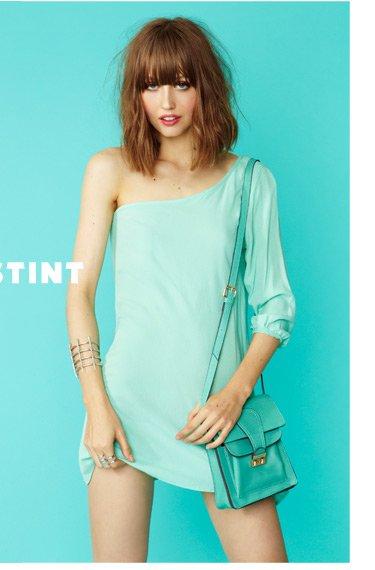 Mint Stint