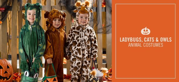 LADYBUGS, CATS & OWLS: ANIMAL COSTUMES, Event Ends September 27, 9:00 AM PT >