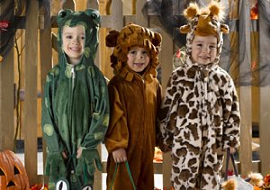 Ladybugs, Cats & Owls: Animal Costumes