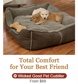 Total Comfort for Your Best Friend, from $89