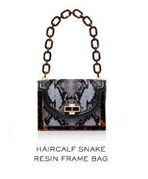 HAIRCALF SNAKE RESIN FRAME BAG