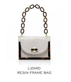 LIZARD RESIN FRAME BAG
