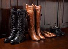 Sofft Women's Footwear
