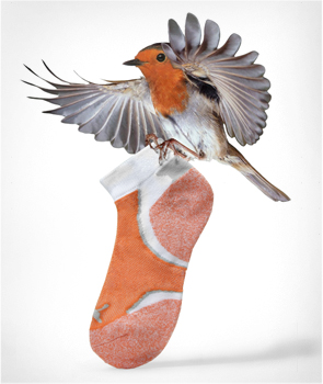 Puma Socks & Underwear