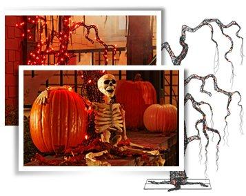 Shop Halloween »