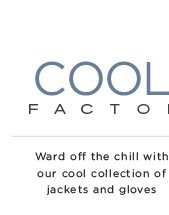 Cool Factor