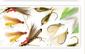 Up to 70% off 50 or our best fly patterns