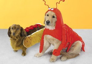 Jeepers Creepers: Dog Costumes