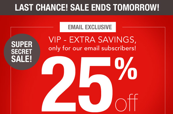 Email subscribers - LAST CHANCE to get 25% off!