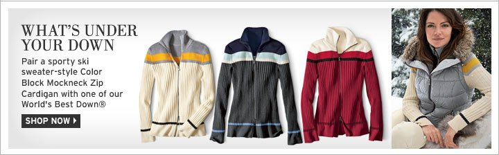 Color Block Mockneck Zip Sweater