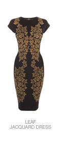 Shop The Leaf Jacquard Dress