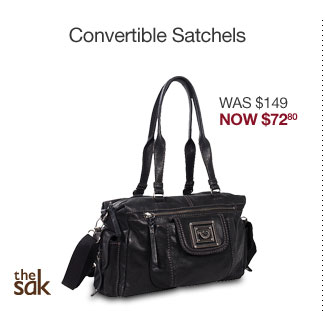 The Sak Pax Leather Satchel