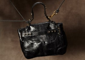 The Bag Shop: Autumn Hues