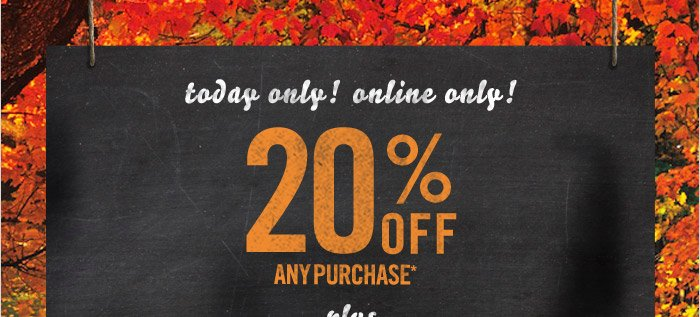 Today only! Online Only - 20% off*