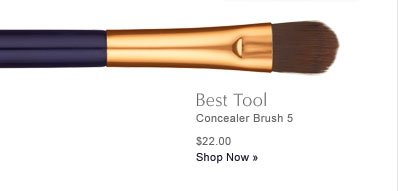 Best Tool Concealer Brush 5 $22.00 Shop Now