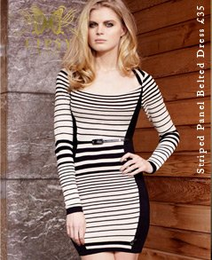 Striped Panel Belted Dress
