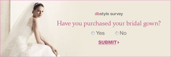 dbstyle survey