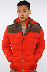 The Robinson Jacket in Persimmon