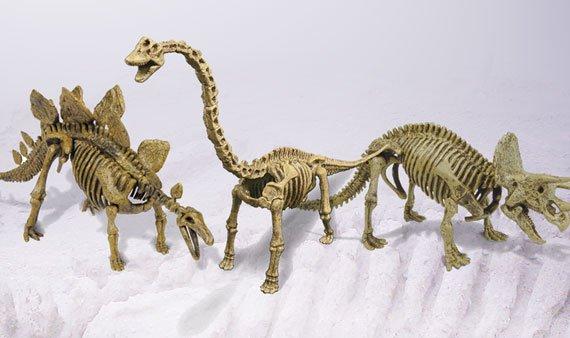 Geoworld: Dig & Discover Dinos - Visit Event