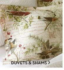 DUVETS & SHAMS