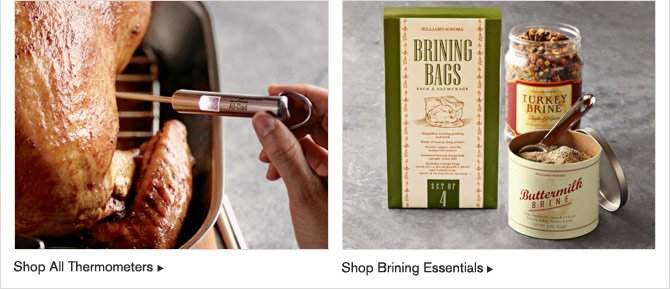 SHOP ALL THERMOMETERS -- SHOP BRINING ESSENTIALS
