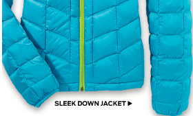 Sleek Down Jacket >