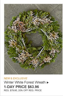 NEW & EXCLUSIVE - Winter White Forest Wreath - 1-DAY PRICE $63.96 - REG. $79.95, 20% OFF REG. PRICE