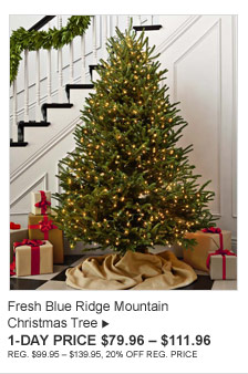 Fresh Blue Ridge Mountain - Christmas Tree - 1-DAY PRICE $79.96 – $111.96 (REG. $99.95 – $139.95, 20% OFF REG. PRICE)