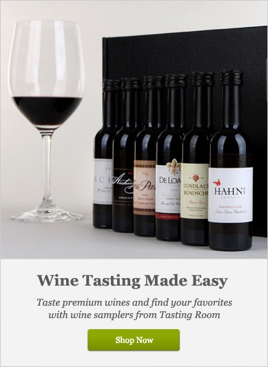 Wine Tasting Made Easy - Shop Now