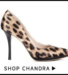 Shop Chandra