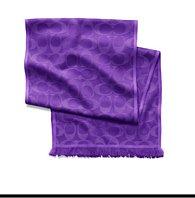 signature C scarf