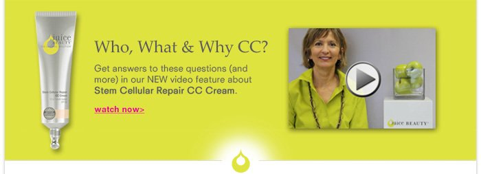 Who, What & Why CC?