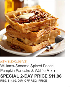 NEW & EXCLUSIVE -- Williams-Sonoma Spiced Pecan Pumpkin Pancake & Waffle Mix - SPECIAL 2-DAY PRICE $11.96 (REG. $14.95, 20% OFF REG. PRICE)